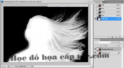 Hướng dẫn tách tóc trong photoshop bằng Channel